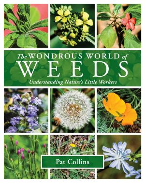 Wondrous  World of Weeds