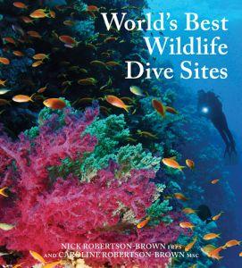 World's Best Wildlife Dive Sites