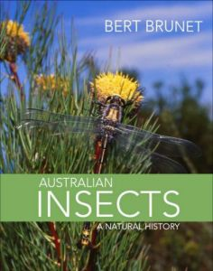 Australian Insects