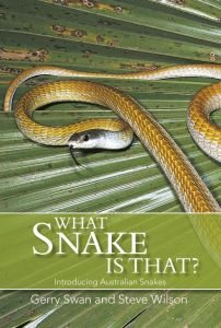 What Snake is That?