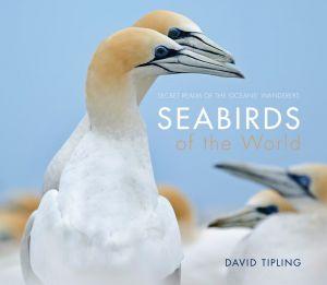 Seabirds of the World