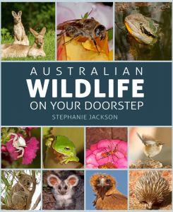 Australian Wildlife on your Doorstep