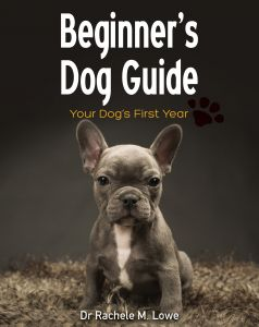 Beginner's Dog Guide