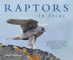 Raptors in Focus