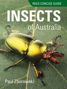 Reed Concise Guide Insects of Australia
