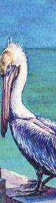 Tasseled Bookmark Pelican in Colour