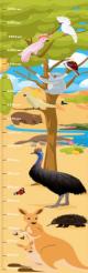 Height Chart Aussie Animals